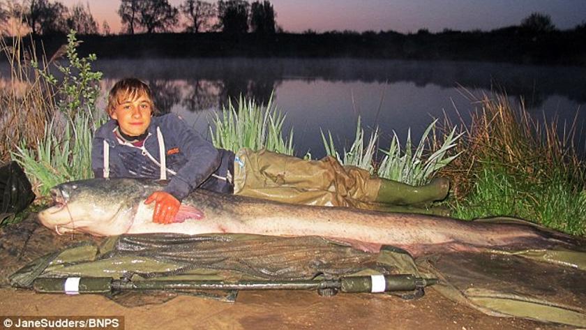 Largest Catfish Ever Caught